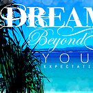 Dream Beyond Your Expectations by Sarah ORourke