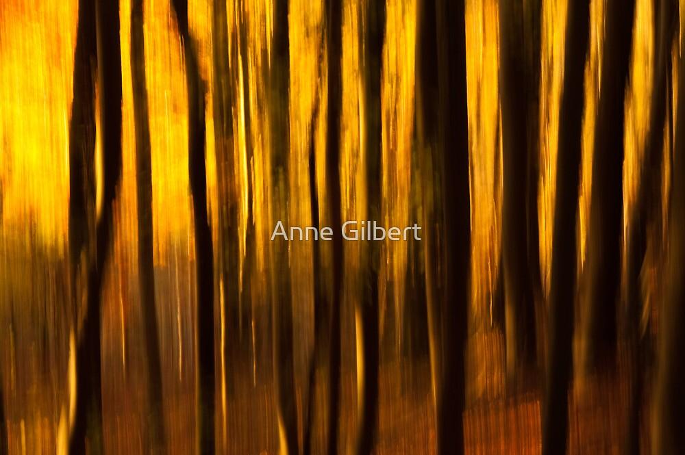Golden Blur by Anne Gilbert
