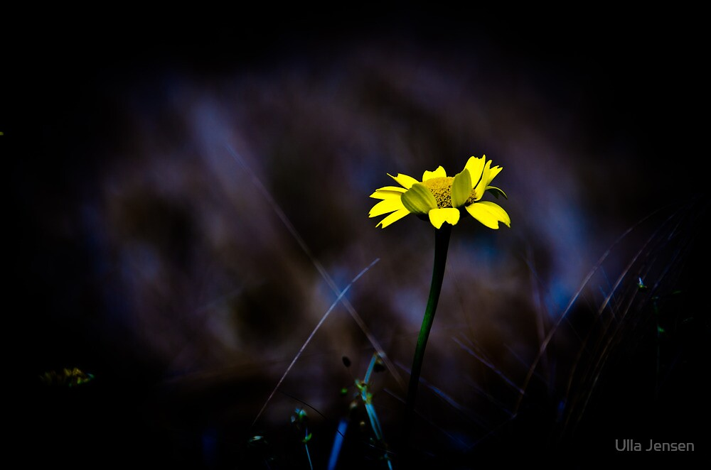 There is always hope by Ulla Jensen