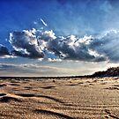 Sunny beach by kostolany244