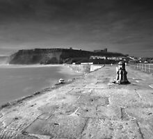 Sentinel BW by Andy Freer