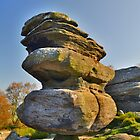 Yorkshire: Brimham Rocks, The Idol by Rob Parsons