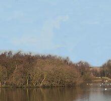 Mill Lakes, Nottingham by julescg