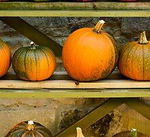 Harvest Display by Anne Gilbert