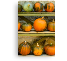 Harvest Display Canvas Print