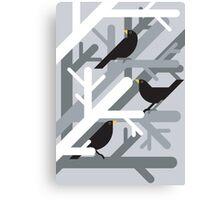 3 Blackbirds vector illustration Canvas Print