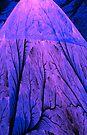 Blue Volcano by Georgia Wild