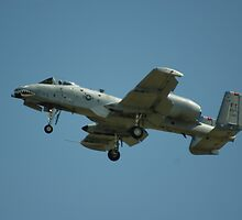 A-10 by stratus1