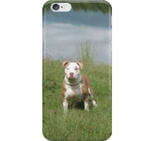 APBT iPhone Case - Rose iPhone Case/Skin