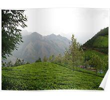 Indian Tea Plantation Poster