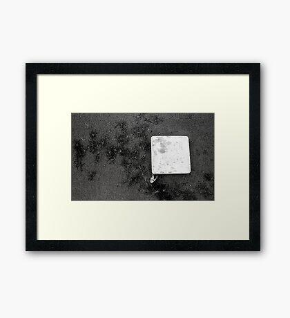 Base Grass Framed Print