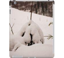 """IGLOO"" iPad Case/Skin"