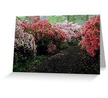 Azalea Walkway Greeting Card