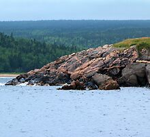 Neil's Harbour, Cape Breton, NS by Peggy Berger