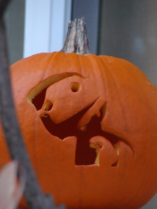 A pumpkin for Hallowe'en by russiannut
