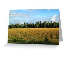 Prince Edward Island Hayfield Just Cut Greeting Card