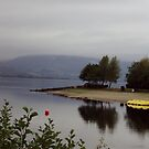A Moody Loch Lomond by biddumy
