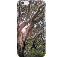 nature's plan  (iPhone case) iPhone Case/Skin