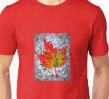 The Spirit of Autumn Unisex T-Shirt