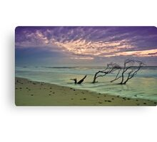 Old Bar Sunrise 2 Canvas Print
