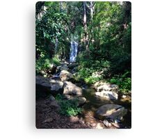 South Africa Waterfall Canvas Print