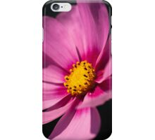 Cosmea iPhone Case iPhone Case/Skin