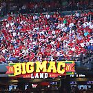 Big Mac Land by barnsis