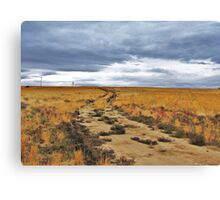 To Ever Ever Land? Canvas Print