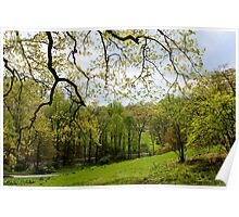 Blooming Landscape Poster