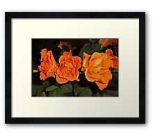 Roses for real friends Framed Print
