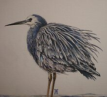 Blue Heron by Boutique