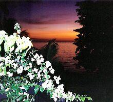 Antigua Sunset by Sandra Gale
