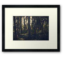 Getting Lost Framed Print