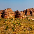 The Bungle Bungles by Andrew Dickman