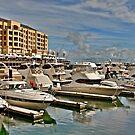 Harbor Envy.... by Ali Brown