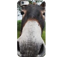 Funny Donkey iPhone Case/Skin