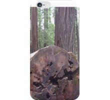 Avenue of the Giants 2 iPhone Case/Skin