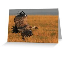 Vulture - in for the Kill Greeting Card