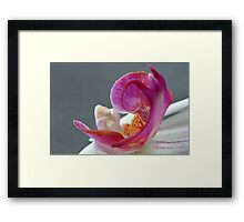 Abstract Orchid Heart. Framed Print