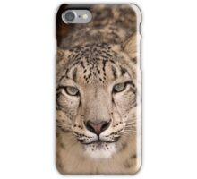 iphone case Snow Leopard portrait iPhone Case/Skin