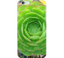 Monterey Aeonium  iPhone Case/Skin