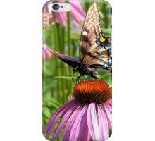 papillon sur la fleur iPhone Case/Skin
