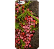 Plums and Asphalt iPhone Case/Skin
