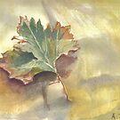 Feuille d'automne by AgnesZirini