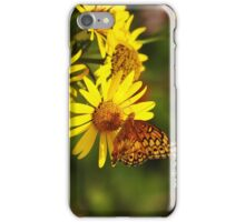 Oranges and Yellows iPhone Case/Skin