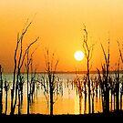 Kariba sunrise iPhone case by Rachael Talibart