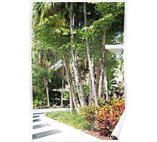 Miami, South Beach, Florida Poster