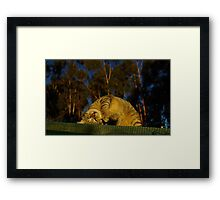 Earth is upside down.... Framed Print