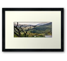 A willingness rising. Framed Print
