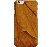 American Tulip Poplar for iPhone iPhone Case/Skin